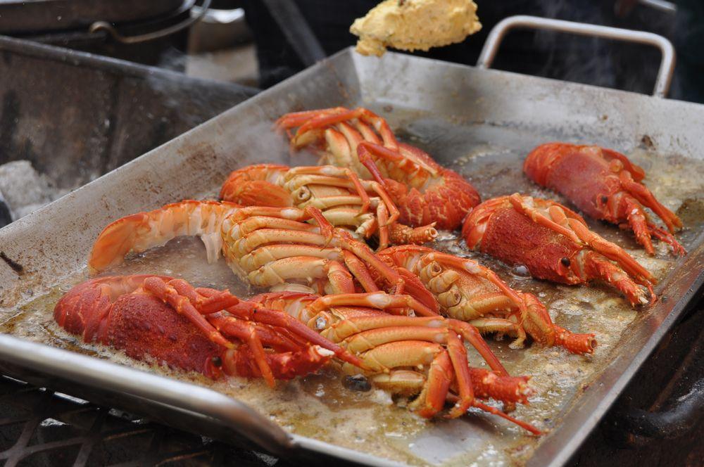 crayfish20140025